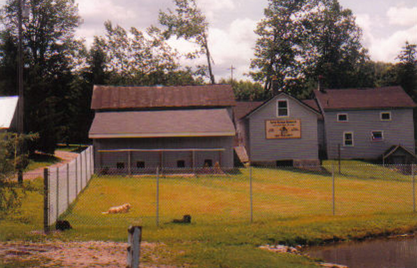 Dog Boarding Services in Upstate NY